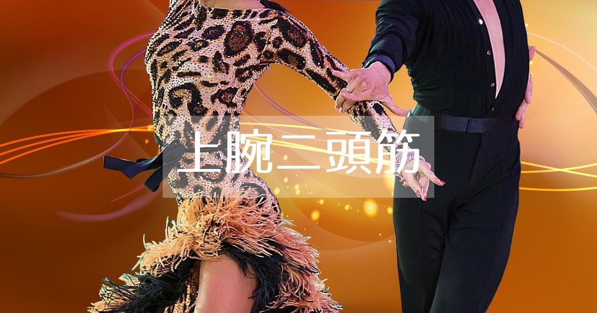 上腕二頭筋|社交ダンス|競技ダンス|肘|曲げる
