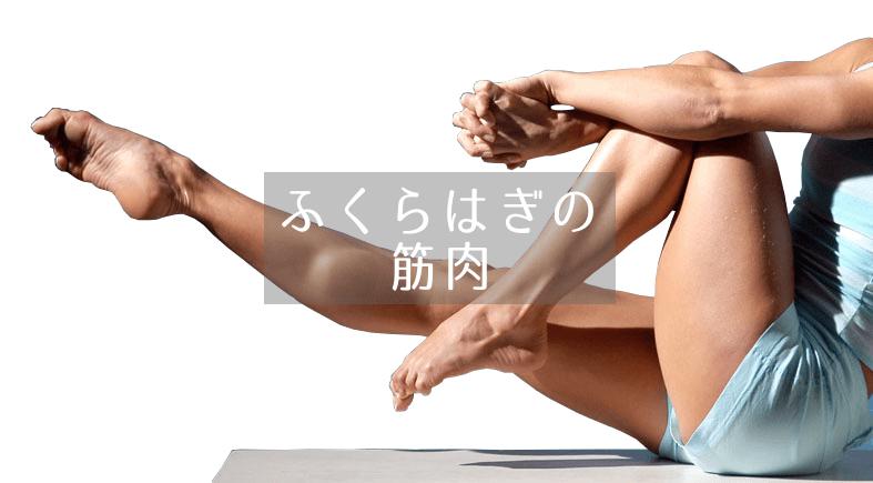 社交ダンス|競技ダンス|ふくらはぎ|筋肉