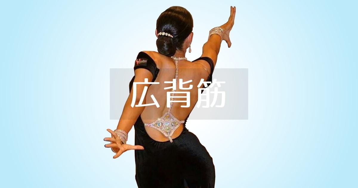 広背筋|社交ダンス|収縮|筋肉